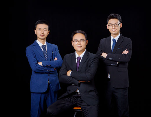 Domestic Sales Team